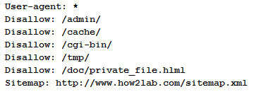 typical robots.txt file format